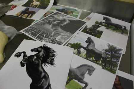 Unicorn Photos