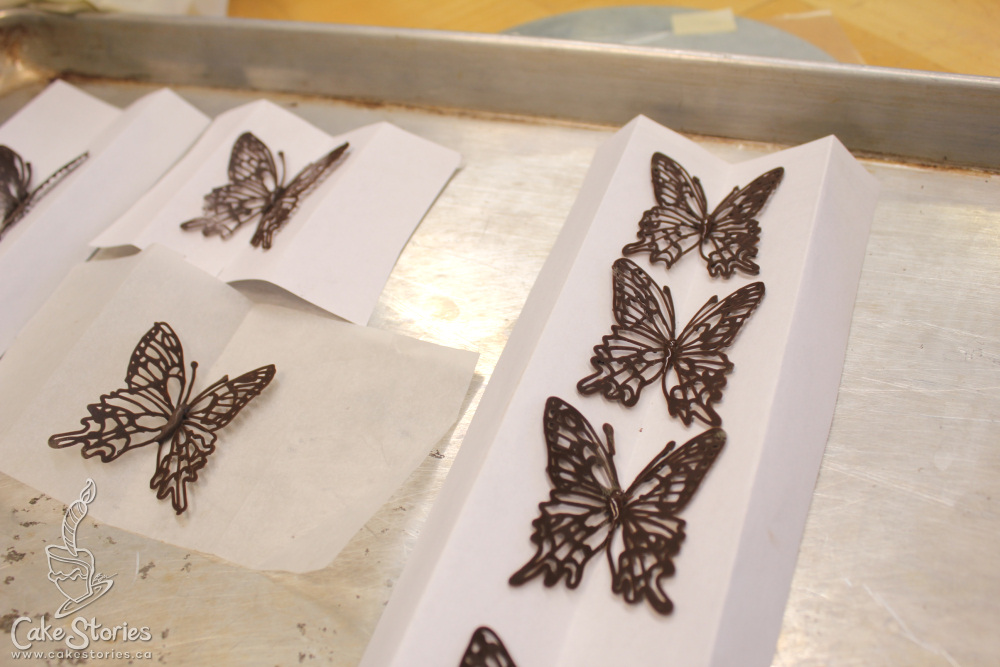 Project cake part 4 piped chocolate butteflies for Chocolate lace template