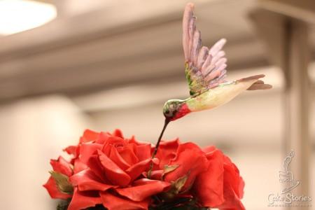 05. Sugar Hummingbird